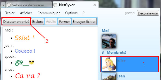 NetGyver screenshot: private chat with Alice.